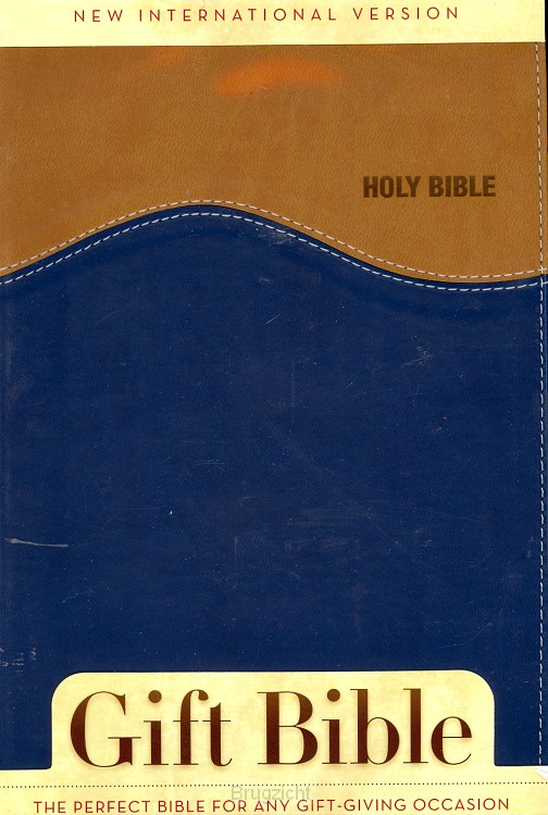 NIV Bible Duo Tone Tan/Blue